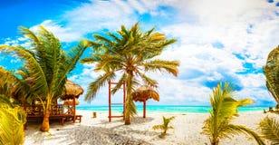 Tropisk semesterort. Mexico Riviera Maya Fotografering för Bildbyråer