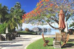 Tropisk semesterort Tahiti Arkivbilder