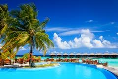 Tropisk semesterortsimbassäng och kaféstång nära stranden Arkivfoto
