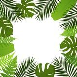 Tropisk sidabakgrund Ramen med gömma i handflatan, ormbunke-, monstera- och banansidor Arkivfoto