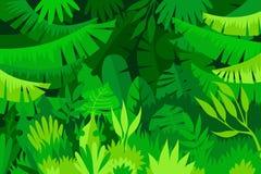 Tropisk sidaskog för full ram vektor illustrationer