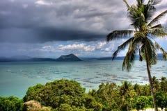 tropisk sikt Arkivbild