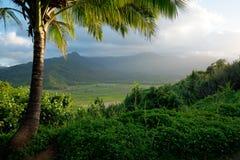 Tropisk sikt av den hawaianska framtidsutsikten i Kauai Royaltyfri Fotografi