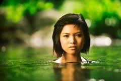 tropisk skönhet Royaltyfri Fotografi