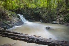 Tropisk skog Asien för vattenfall Arkivbilder
