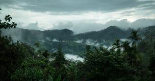 Tropisk skog/djungel med moln Arkivbilder