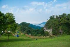 Tropisk skog på Nan Northern Thailand Arkivfoton