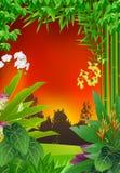 Tropisk skogbakgrund Royaltyfri Illustrationer