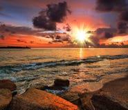 tropisk solnedgång royaltyfri bild