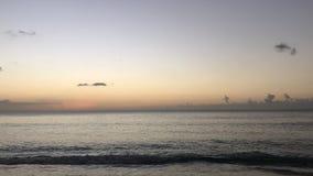 Tropisk solnedgångtimelapse stock video