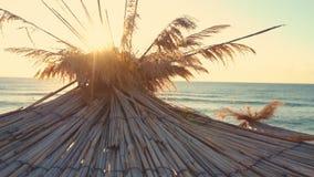 Tropisk soluppgång över stranden Soluppgång över den tropiska stranden och slags solskydd arkivfilmer