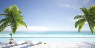 Tropisk sommar strandvardagsrum med palmträd, simbassäng av den lyxiga villan, sommarbegrepp royaltyfria foton