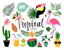 Tropisk sommarsamling, beståndsdelar som isoleras på vit Arkivfoto