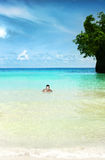 tropisk stående Royaltyfri Bild