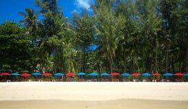 tropisk strandö Arkivbild