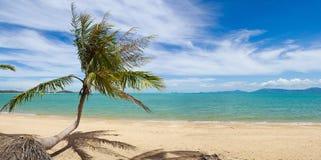 tropisk strandö royaltyfri fotografi