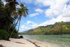 tropisk strandökensand arkivfoton