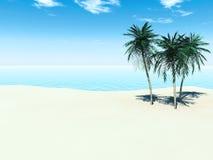 tropisk strand vektor illustrationer