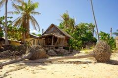Tropisk strand efter storm royaltyfria bilder