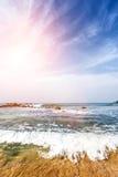 Tropisk strand för härlig landskapsommar Arkivbild