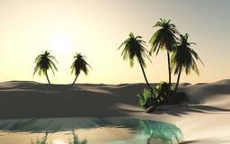 Tropisk strand, havskust med palmträd Arkivbilder