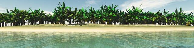 Tropisk strand, havskust med palmträd Arkivfoton