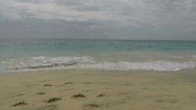Tropisk strand i africa arkivfilmer