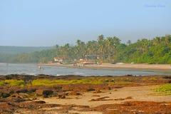 Tropisk strand i Goa royaltyfri fotografi
