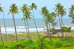 Tropisk strand i Goa royaltyfria bilder