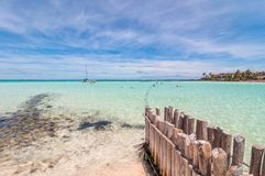Tropisk strand i Isla Mujeres, Mexico arkivbilder