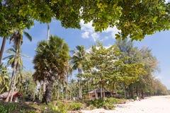 Tropisk strand i Krabi Arkivfoto