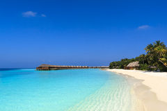 Tropisk strand i Maldiverna Arkivfoto