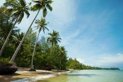 Tropisk strand i solig dag Fotografering för Bildbyråer