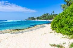 Tropisk strand i Sri Lanka, Royaltyfri Fotografi
