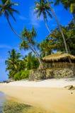 Tropisk strand i Sri Lanka, Arkivfoto