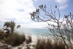 Tropisk strand II Arkivfoto