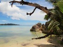 Tropisk strand lilla viken lazio Arkivbild
