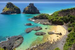 Tropisk strand med en korallrev Arkivbild