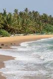 Tropisk strand med exotiska palmträd och träfartyg på sanden Arkivbild