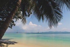 Tropisk strand med Palmtree Vitt sand- och turkosvatten i en ö i Thailand royaltyfri fotografi