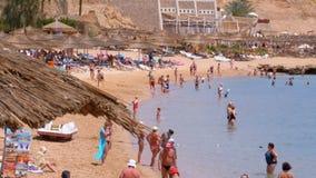 Tropisk strand med solparaplyer på Röda havet nära korallreven egypt stock video