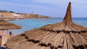 Tropisk strand med solparaplyer p? R?da havet n?ra korallreven egypt lager videofilmer