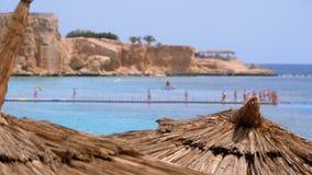 Tropisk strand med solparaplyer p? R?da havet n?ra korallreven egypt arkivfilmer