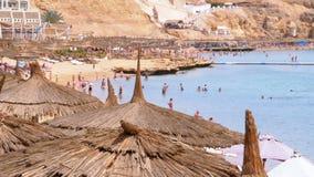 Tropisk strand med solparaplyer p? R?da havet n?ra korallreven egypt stock video