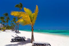 Tropisk strand nära turist- semesterort Arkivbild