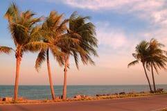 Tropisk strand och hav Royaltyfri Fotografi