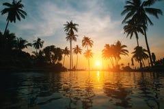 Tropisk strand på den fantastiska solnedgången Royaltyfri Bild