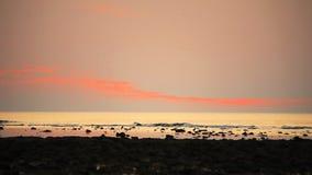 Tropisk strand på härlig solnedgångbakgrund stock video