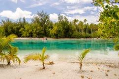 Tropisk strand på Moorea, franska Polynesien Arkivfoto