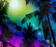 Tropisk strand på natten med reflektera för en fullmåne och en cocon Royaltyfri Foto